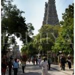 ಮದುರೈ ಮೀನಾಕ್ಷಿ ದೇವಾಲಯದ ದೃಶ್ಯಂಗೊ...