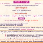 Brahma kalasha (15)