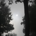 ಸುಪ್ರಭಾತ - ಭಾಮಿನಿಲಿ