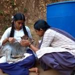 ಸಮಸ್ಯೆ 85 : ಚಿತ್ರಕ್ಕೆ ಪದ್ಯ